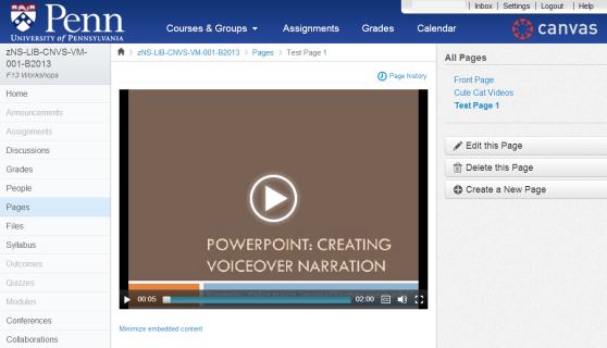 How video looks in canvas