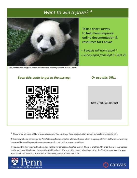 Canvas User Survey Flyer