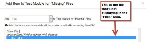 Module add item window showing the file that's missing in the Files area of the site.