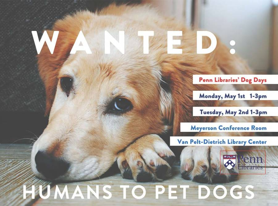 Wanted: Humans to Pet Dogs. Penn Libraries' Dog Days. Monday, May 1st, 1-3pm. Tuesday, May 2nd, 1-3pm. Meyerson Conference Room. Van Pelt-Dietrich Library Center.