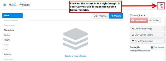 An example of where the Course Setup Tutorial button appears in Canvas when it has been enabled. The Course Setup Tutorial button appears in the right margin of a Canvas site.